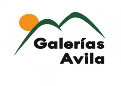 GALERIAS AVILA